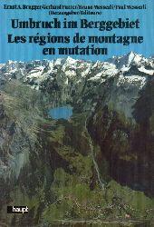 Brugger,Ernst A. und Gerhard Furrer und weitere  Umbruch im Berggebiet