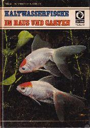 Ladiges,Werner  Kaltwasserfische in Haus und Garten