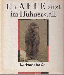Herzog,Ursula+Peter  Ein Affe sitzt im Hühnerstall