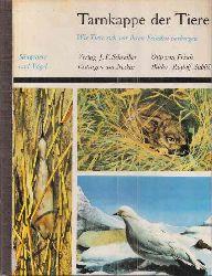 Frisch,Otto von  Tarnkappe der Tiere.Säugetiere und Vögel