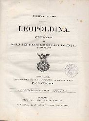 Leopoldina  Leopoldina 25.Jahrgang 1889 Heft Nr. 1-24 (1 Band)