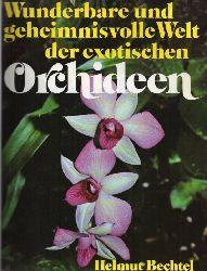 Bechtel,Helmut  Wunderbare und geheimnisvolle Welt der exotischen Orchideen