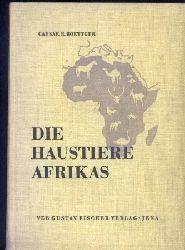 Boettger,Caesar R.  Die Haustiere Afrikas