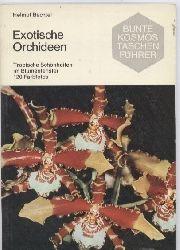Bechtel,Helmut  Exotische Orchideen