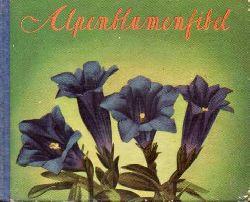 Amstutz,Walter(Hrg.)  Alpenblumenfibel