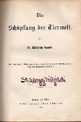 Haacke,Wilhelm  Die Schöpfung der Tierwelt