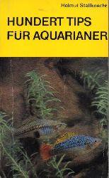 Stallknecht,Helmut  Hundert Tips für Aquarianer