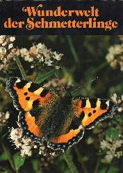 Danesch,Edeltraut  Wunderwelt der Schmetterlinge