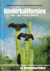 Becker,Friederike+Beate Schwarze  Niederkalifornien Tier-und Pflanzenwelt