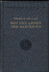 Benecke,Wilhelm  Bau und Leben der Bakterien