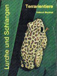 Bechtel,Helmut  Terrarientiere Band 1 : Lurche und Schlangen