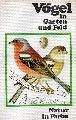 Felix,J.  Vögel in Garten und Feld
