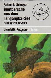 Brühlmeyer,Achim  Buntbarsche aus dem Tanganjika-See