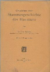 Antonius,Otto  Grundzüge einer Stammesgeschichte der Haustiere