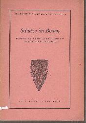 Bundesdenkmalamt Wien (HSg.)  Schätze im Boden
