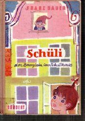 Bauer,Franz  Schüli das Zwerglein im Schulhaus