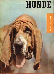 Tylinek,Erich  Hunde