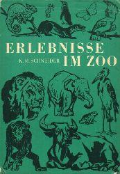 Schneider,Karl Max  Erlebnisse im Zoo