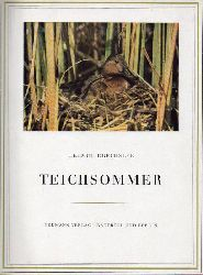 Drechsler,Helmut  Teichsommer