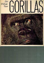Groves,Colin P.  Gorillas