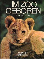 Klages,Jürg  Im Zoo geboren (Zürich,Basel,Hannover,Frankfurt,München u.a.)
