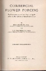 Snow,Dorothea J.  Corky und der Zirkus