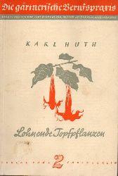 Huth,Karl  Lohnende Topfpflanzen