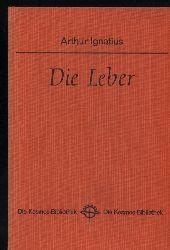 Ignatius,Arthur  Die Leber