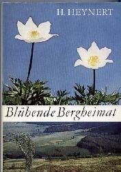 Heynert,Horst  Blühende Bergheimat
