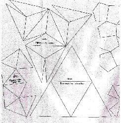 Bail  Methodischer Leitfaden für den Unterricht in der Naturgeschichte