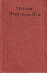 Brehm,A.E.  Menschenaffen