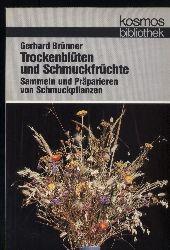 Brünner,Gerhard  Trockenblüten und Schmuckfrüchte