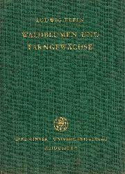 Klein,Ludwig  Unsere Waldblumen und Farngewächse