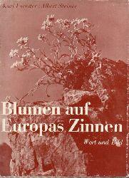 Foerster,Karl und Albert Steiner  Blumen auf Europas Zinnen