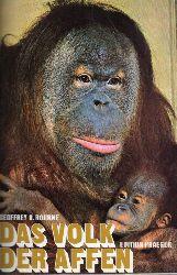 Bourne,Geoffrey H.  Das Volk der Affen