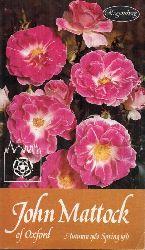 Mattock,John Ltd.  Roses Autumn 1980 Spring 1981