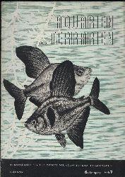 Aquarien und Terrarien  6.Jg.1959. Heft 7,8,9,10,11