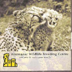 Wassenaar-Zoo  Wassenaar Wildlife Breeding Centre (Gepard mit Kind)