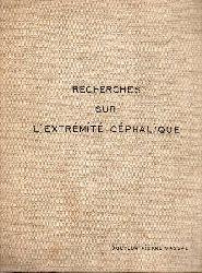 Vassal,Pierre  Recherches sur lextrémité céphalique