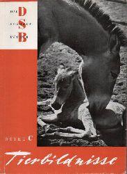 Eipper,Paul (Geleitwort)  Tierbildnisse
