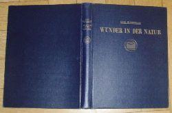 """Blossfeldt , Karl  ( 1865 - 1932 )   """" Wunder in der Natur  Blossfeldt """""""