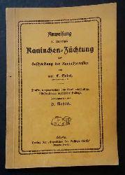 Mahlisch, P. - Gabel , E.   Anweisung zu ergiebiger Kaninchen - Züchtung und Beschreibung der Kaninchenrassen