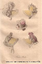 Damenmode 1810 er Jahre  ( Aus: Wiener -Moden-Zeitung und Zeitschrift für Kunst, schöne Literatur und Theater)