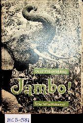 Strandberg, Otto; Hassner, Rune:  Jambo! Wie steht es mit Afrika?