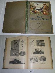 William Marshall  Bilderatlas zur Tierkunde mit beschreibendem Text, Erster Teil: Die Wirbellosen von den Einzellern bis zu den Gliederfüßlern