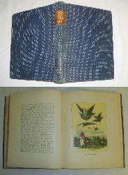 Ludwig Bechstein  Deutsches Märchen-Buch