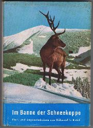 Schmook, Alex:  Im Banne der Schneekoppe. Wo der blaue Enzian blüht. Tier- und Jagderlebnisse aus den Wäldern der Heimat. Jagderlebnisse aus Rübezahls Reich.