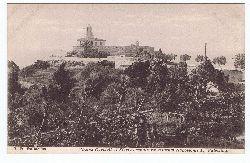 Halladjian, J. H.:  Pharos Carmeli et Flortus sepulturae militum Napoleonis I. Palestina.