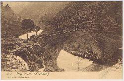 Dog River. (Lebanon). Carte postale No. 19.