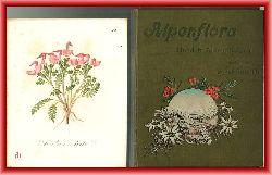 Graf, Ferdinand  Alpenflora. Hundert Alpenpflanzen gemalt von Josef Seboth.
